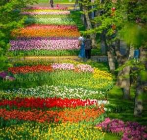 Куда лучше всего съездить весной