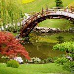 Сад — несколько практических советов